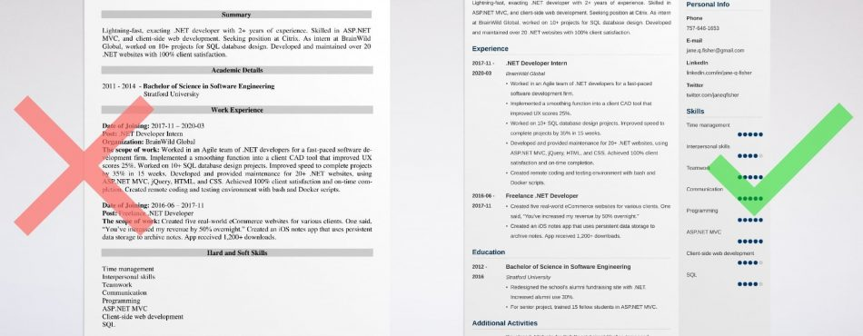 Developer Resume. Useful Tips to Show Suitability photo